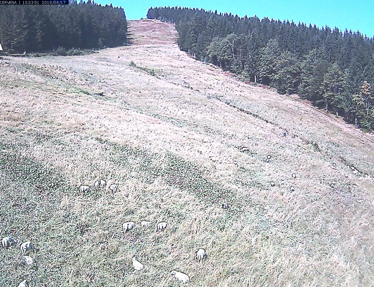 Webkamera Sjezdovka Červená I